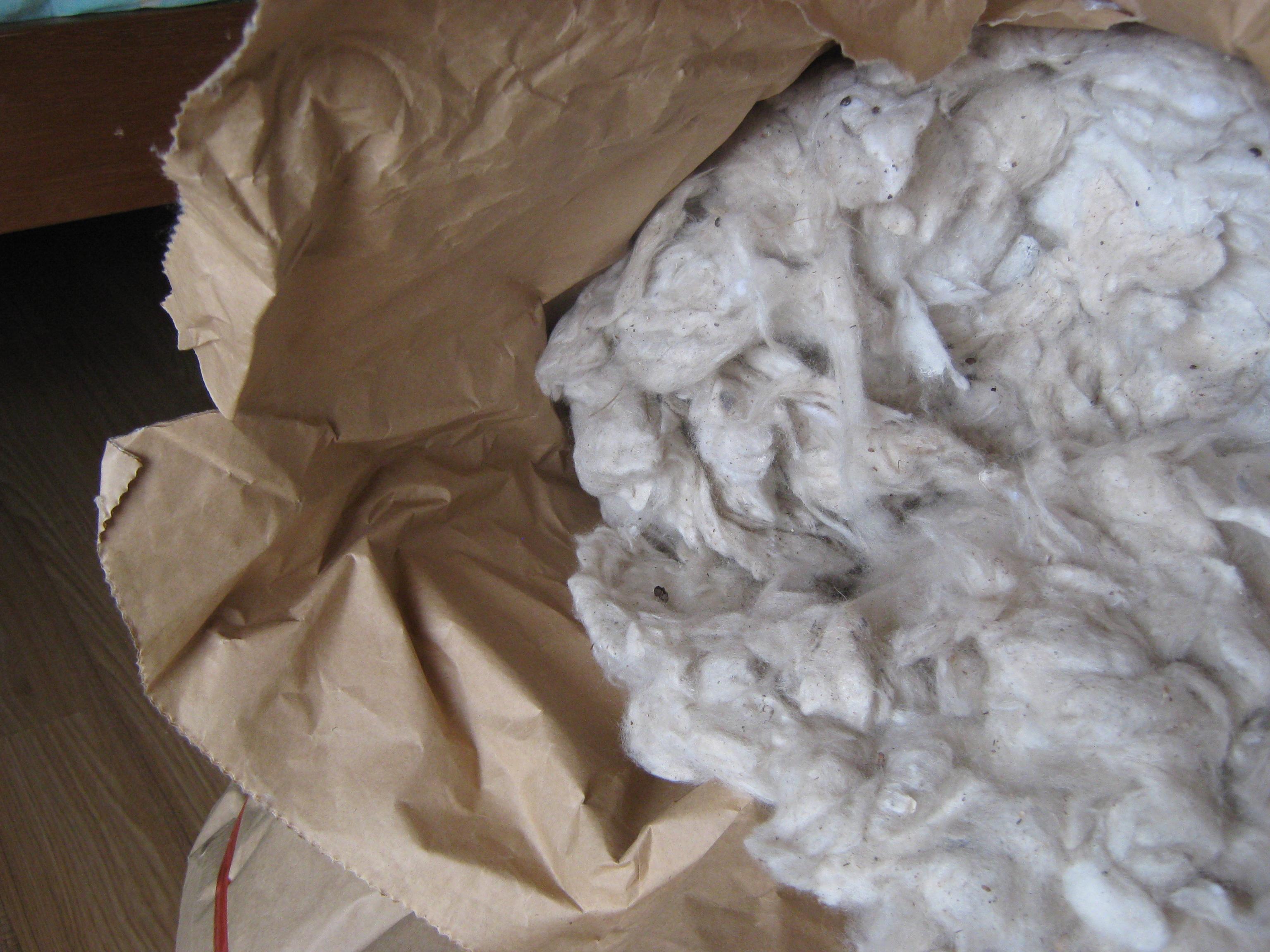 Sarawak Kekabu, or silk-cotton.  Jahat sikit, but usable.